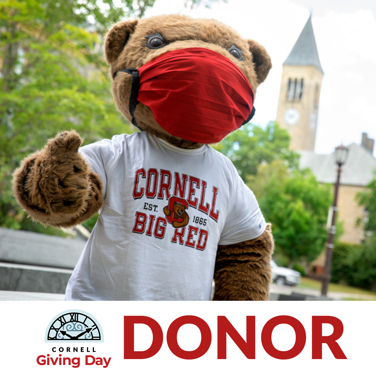 Donor Badge 1 -- Touchdown wearing a mask with Cornell Giving Day logo and donor label under photo